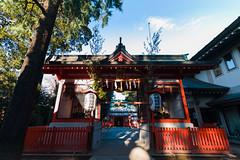 20161229-_DQH0163.jpg (ykgraph) Tags: 東京 foveon 日本 art sdquattroh sdquattro sigma 1224mmf4