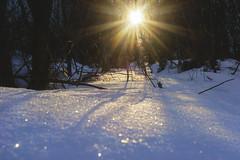 Helios (petrapetruta) Tags: sun snow light shining sparkle sonya7 winter