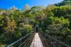 秀巒楓景 (Yen ZOO) Tags: taiwan maples 新竹 台灣 楓葉 秀巒 風景