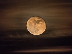 Wolf Moon (Adriana Faciu) Tags: sky space craters clear round clouds fog bright wolfmoon night fullmoon moon