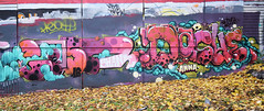 Shane  •   Dashe (HBA_JIJO) Tags: streetart urban graffiti vitry vitrysurseine art france hbajijo wall mur painting letters aerosol peinture lettrage graff lettres lettring shane dashe writer murale paris94 spray bombing thebullshitters
