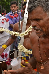 Indien India Pondicherry Puducherry Blog (53) (lustforlifeblog) Tags: indien india pondicherry puducherry blog lust4life lustforlife south kali prozession procession goddess göttin tod death