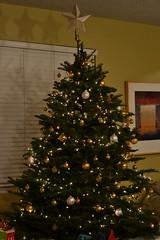 Christmas 2011 001 (diep20) Tags: christmas2011