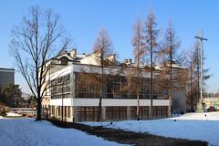 Stalowa Wola ul. Popiełuszki (5)