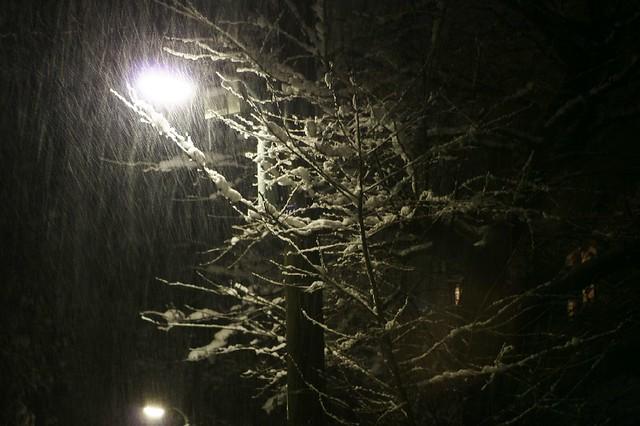 闇夜の降雪