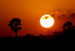 Sun sets for the last time in 2005 by Pandiyan, on Flickr
