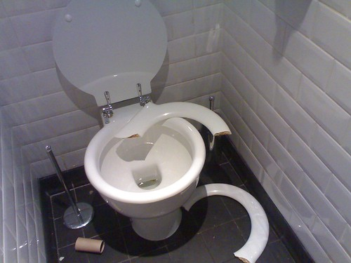 Why Are Toilet Seats In Public Toilets Broken