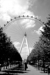 London Eye (Mr Broughton) Tags: newzealand london thames europe yeah fineart auckland embankment innit newzealandart knowwhatimean newzealandphotography stuartbroughton httpwwwstuartbroughtoncom facebookstuartbroughtonphotography broughton68 httpswwwfacebookcompagesstuartbroughtonphotographywwwstuartbroughtoncom186354733512refsgm