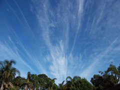 Streaky sky over Woy Woy (Spikebot) Tags: cloud australia nsw walkies umina pc2257 woywoy auspctagged