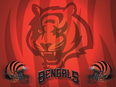 Cincinnati Bengals Wallpaper (beespicer sports) Tags: wallpaper sports cincinnati nfl bengals