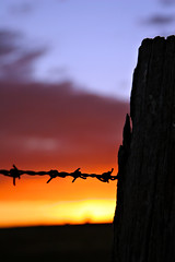 Barbed Wire Fence by Sunset (Xenedis) Tags: sunset silhouette fence landscape australia nsw barbedwire newsouthwales southernhighlands yerrinbool