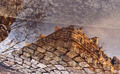 Reflet de France / Reflection of France (Délirante bestiole [la poésie des goupils]) Tags: paris france reflection water canon scenic reflet saintgermain flaque eos50 puddlepool