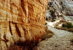 orange wall (rappensuncle) Tags: orange color film rock wall 35mm utah sandstone kurt hiking trail predigital zion kodachrome rappensuncle nikkormatel