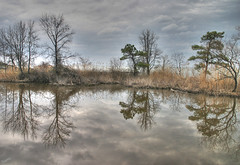 Reflections (` Toshio ') Tags: park reflection nature tag3 taggedout clouds wow landscape ilovenature tag2 tag1 gutentag maryland lovely chesapeake hdr 1on1 toshio downspark photomatix worldthroughmyeyes gtaggroup mywinners