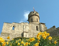 Observatory Tower, Lincoln Castle (Lincolnian (Brian)) Tags: england tower castle beautiful spring interesting victorian 100v10f lincolnshire observatory lincoln daffodils oldcity 123faves