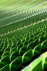 (...like a chimp with coconuts) Tags: green football fussball chairs stadium fifa soccer rows seats swirl olympic worldcup morph sweep kiss2 olympiastadion falloff kiss3 kiss1 kiss4 mg7772 kiss5