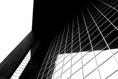 Edificio en Blanco y Negro (Miguel.Sanchez) Tags: bw building blancoynegro mexico edificio nuevoleon monterrey macroplaza miguelsanchez