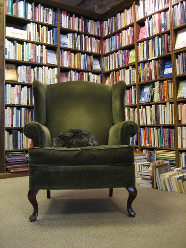 used books cat
