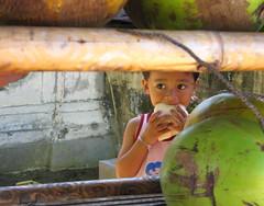 Hide behind the coconut (Socwind) Tags: bali tag3 taggedout tag2 tag1 kiss2 yourfavorite kiss3 i500 interstingness384 kiss1 kiss4 1on1people 123taiwan explore15apr06 kiss5 socwind