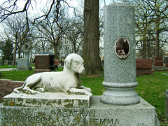 Bohemian National Cemetery, Chicago, IL