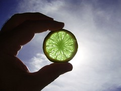 Lime Fusion (The Rocketeer) Tags: sky sun beauty eclipse interestingness hand slice citrus lime fusion translucence