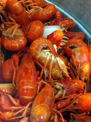 The crawfish, they are finished. (Boots in the Oven) Tags: red louisiana crawfish tasty foodporn seafood crayfish boiled natchitoches mudbugs crawfishboil easter2006
