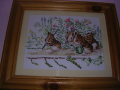 Guinea Pig Cross Stitch (skoop102) Tags: guinea pig guineapig cavies cavy crossstitch cross needlework sewing crafts guineapigs picture craft beatrixpotter pigs guineas thegardeningguineapigs