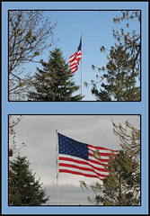 Contrast (epman_99) Tags: collage flags a610