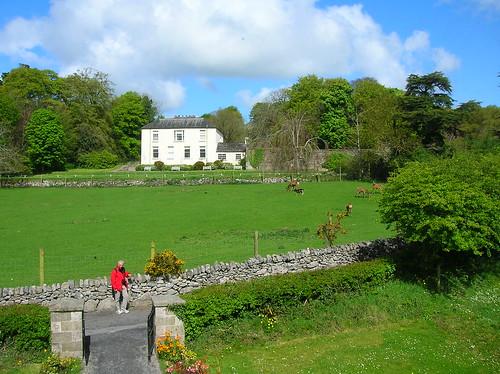 Que necesitas saber de Irlanda en tu viaje