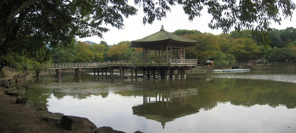 Pond in Nara Park