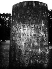 permelia (getthebubbles) Tags: blackandwhite bw spring lomo alabama saturday 2006 lomofied fauxlomo utatafeature fosterfamilyreunion