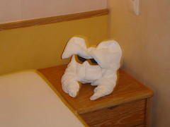 Towel bunny (Scott Holmes) Tags: cruise enchantmentoftheseas chairmainscircle gevity