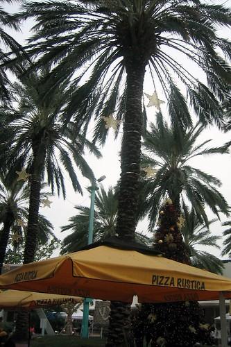 Miami - South Beach: Lincoln Road - Pizza Rustica