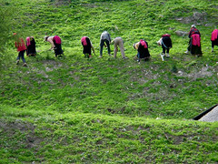 Tibetan people (Photography lesson in Shanghai) Tags: china people green landscape culture
