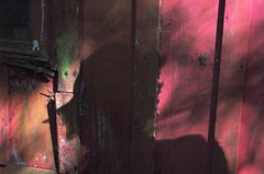 kodama, strolling the hood on mom's day  ; } (hurleygurley) Tags: shadow v mysterious shack rgb hg mothersday lagunitas hurleygurley kodama pp muted utataredviolet elisabethfeldman faveset