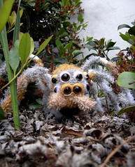 Crumpet on the prowl (Sappymoosetree) Tags: original dog elephant tree cute climb spider still eyes hand arachnid lion sew best creepy plush softie freak lamb awards yet crumpet phobia sappymoosetree creepycute