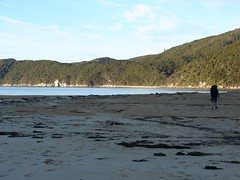 DSC01887 (alickmighall) Tags: newzealand abeltasmannationalpark coastaltrack agmcarwk4