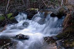 Stream Blur (Clyde Barrett) Tags: park blur newfoundland stream falls nl nfld clydebarrett