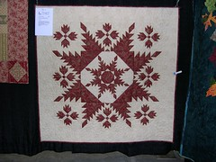 5 May 06 quilt 7