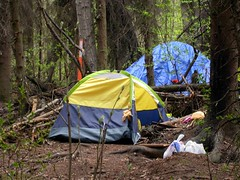 Homeless camp in Valley of the Moon woods