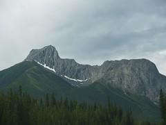 P6231116 (tc_tse) Tags: mountain canada kananaskis olympus e500 brokeback