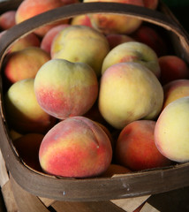 ecstasy (glovision) Tags: farmersmarket northcarolina peaches basketofgoodness goodnessgrowsinnorthcarolina summer seasons tag1 tag2 tag3 tageedout