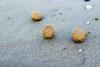IMG_1144 (Lucia Barbi) Tags: marinadisannicola maredinverno mare inverno
