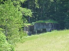 A3922 Letzi-Ost, Bzberg, Aargau, Switzerland (W-chlaus) Tags: schweiz switzerland war suisse fort swiss wwii krieg bunker ww2 aargau armee letzi bzberg a3922 bunkerfreunde