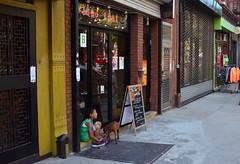Just The Two Of Us (MPnormaleye) Tags: street city urban dog pet signs girl retail kids brooklyn children doors child sidewalk utata shops stores