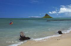 Mokoliʻi/Chinaman's Hat, O'ahu, Hawaii (PhotoDG) Tags: landscape hawaii oahu wideangle 夏威夷 kualoa chinamanshat kualoabeach kualoabeachpark mokoliʻi ocead