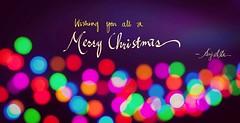 Merry Christmas! (Asif A. Ali) Tags: merrychristmas happyholidays bokeh christmas greeting