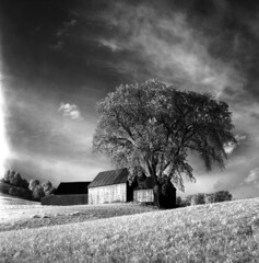 100459 01 (ndpa / s. lundeen, archivist) Tags: nick dewolf nickdewolf october bw blackwhite photographbynickdewolf 1959 1950s film 6x6 mediumformat monochrome blackandwhite vermont ruralvermont rural farm farmland infrared infraredfilm landscape hills tree trees sky clouds building buildings whitemountains house home