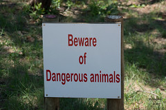 Songimvelo (jimlustgarten) Tags: lustgarten animals humala songimvelo southafrica kortbegrip mpumalanga za