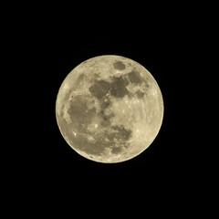 Full Moon 13Dec16 (pmcdonald851) Tags: moon moonscape moonshine fullmoon canonsx40 sx40 canon chdk georgia ga